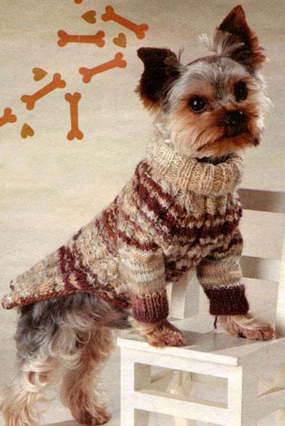 Полосатый свитер для собаки