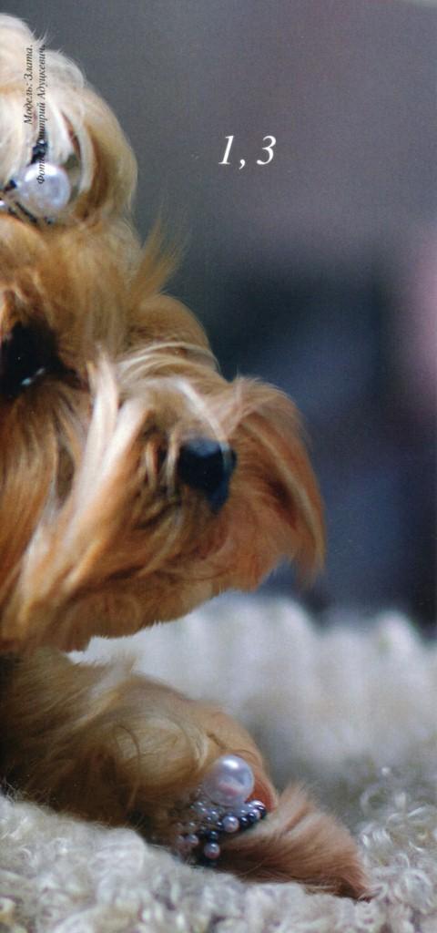 Колье и браслеты для собаки. Бисероплетение